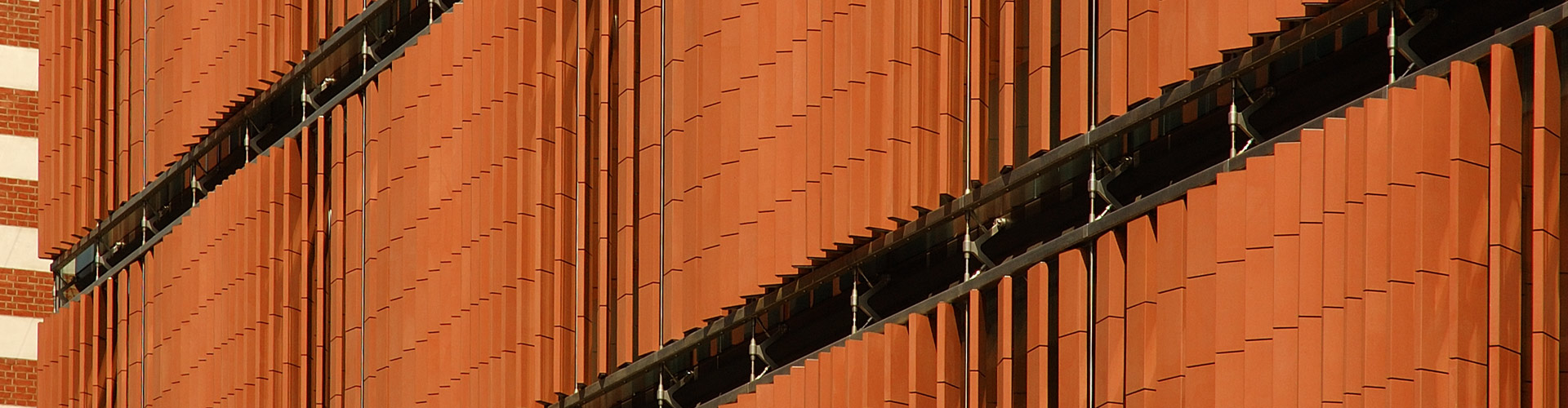 Institute of Cancer Studies